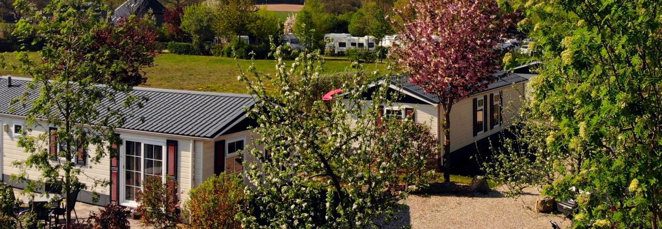 Landhaus Chalets im Frühling © Campingpark Kerstgenshof